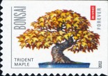 [Bonsai Trees - Self-Adhesive Stamps, Typ FYP]