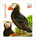 [Birds - Tufted Puffins, Typ GCS]