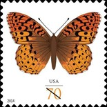 [Butterflies - The Great Spangled Fritillary, Typ GLH]