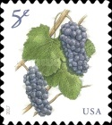 [Fruit Definitives - Grapes, Typ HWB]