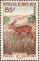 [Hunting and Tourism, type AN]