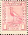 [Southern Lapwing, type FO10]