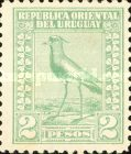 [Southern Lapwing, type FO11]