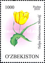 [Flowers - Tulips, Typ AFV]