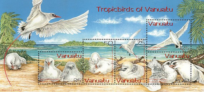 [Red-tailed Tropic Birds, type ]