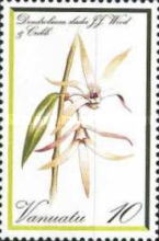 [Orchids, type AT]
