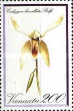 [Orchids, type BD]