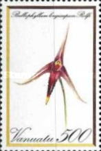 [Orchids, type BE]