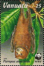 [Endangered Species - Flying Foxes, type PL]