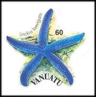 [Starfish - Self-Adhesive, type XD]