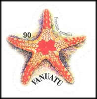 [Starfish - Self-Adhesive, type XE]