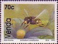 [Bees, type ]