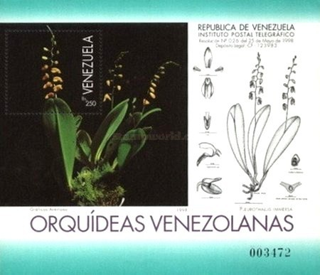 [Orchids, type ]