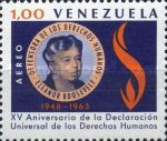 [Airmail - Eleanor Roosevelt and the 15th Anniversary of Declaration of Human Rights, type BGC]