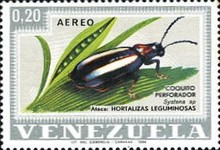 [Airmail - Insects, type BNK]