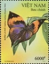 [Butterflies - World Stamp Exhibition CHINA 2019, Wuhan City, type ECZ]