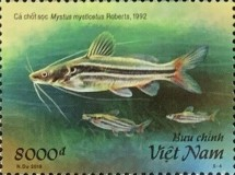 [Marine Life - Fish of the Mekong River, type EDG]