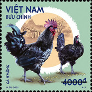[Roosters & Chickens, type EGN]