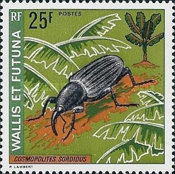 [Insects, type DE]