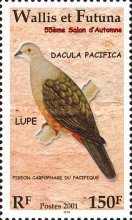 [The 55th Autumn Stamp Show - Birds, type YH]