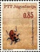 [Insects - Beetles, Typ AUV]