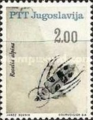 [Insects - Beetles, Typ AUW]