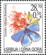 [Flowers and Butterflies, type DRR]
