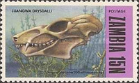 [Prehistoric Animals - Fossils from the Luangwa Area, Typ CP]
