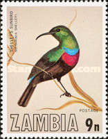 [Birds of Zambia, type FN]