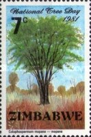 [National Tree Day, type AA]